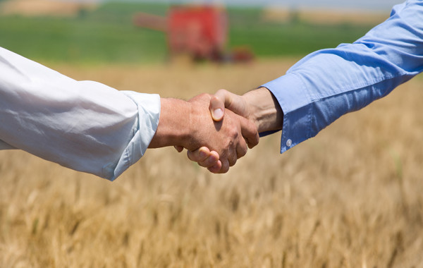 Commercialista Agriturismo